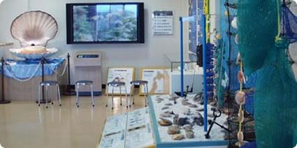 ホタテガイ養殖施設模型ゾーン